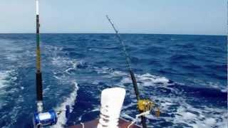 pirates fishing team - hamata 2012 - full video(, 2012-10-24T22:02:17.000Z)
