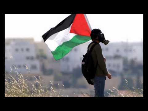 iwan fals - palestina (akustik)