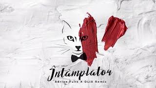 Descarca The Motans - Intamplator (Adrian Funk X OLiX Remix)