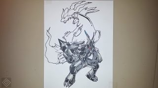 Legendary Tao Duo Pokemon (Zekrom and Reshiram) - Speed Drawing | Labyrinth Draw