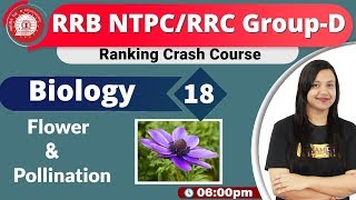 Class-18 |RRB NTPC/RRCGroup-D||Ranking Crash Course||Science|By Amrita Maam|| Flower and pollination