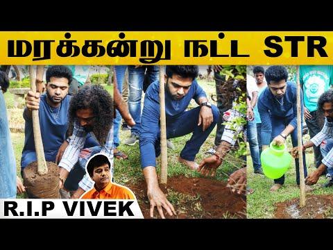 Maanaadu Shooting Spot-ல் மரக்கன்று நட்டு விவேக்கிற்கு அஞ்சலி செலுத்திய Silambarasan..!   Vivek   HD