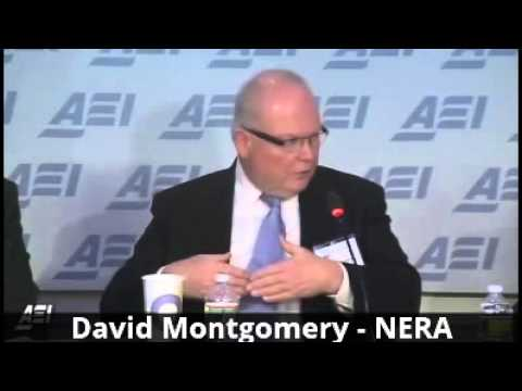CRA's Ditzel and NERA's Montgomery Dispute Impacts of LNG Exports to non-FTA Countries