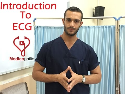 Introduction To ECG -  ECG  1