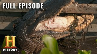 Swamp People: Ruthless Oversized Beasts Fill the Swamp (S10 E13) | Full Episode | History
