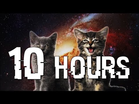 "[10 hours] ""Space Cats — Magic Fly"" by Enjoyker / Singing Cats / Поющие котята"