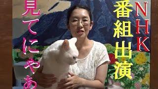 【会津若松】 NHK総合に私と太陽(猫)が出演します!!番組名:やるなぁ~!投稿DO画 (=^・・^=)(^_-)-☆ 2016年9/20 【猫かわいい】【会津若松市】