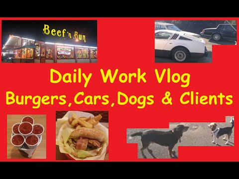 Daily YouTube Vlog working on Cars Video Blog BTS Boring + Dogs & Break in