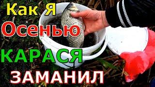 ОСЕНЬЮ ЛЕГКО ВЕДРО КАРАСЯ на ЭТО Насадка для карася леща карпа по холодной воде Насадка для Рыбалки