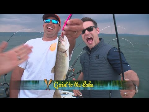 Jason DeRusha Slams Matt Brickman's Fish