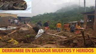 Última Hora: Extraño Gusano Causa Temor en Honduras / Está Pasando Ahora en Ecuador