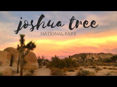 Joshua Tree National Park, November 2017   Travel Diary