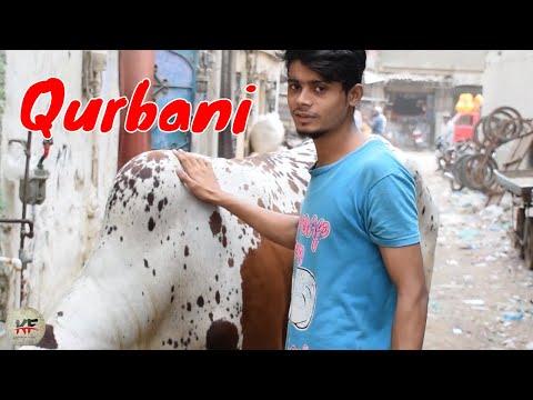 Qurbani ( Bakra Eid Special ) Short Film by Karachi Films Official