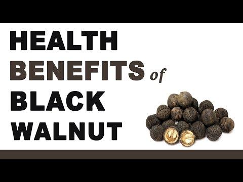 Health Benefits of Black Walnut