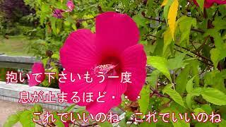 波の花海岸 / 服部浩子 ♪コジロー