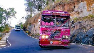 Dham rajina bus new horn
