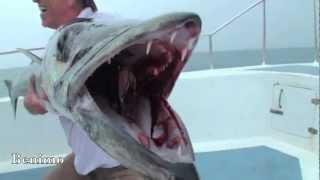 Пхукет , Морская рыбалка - Экскурсии о.Пхукет