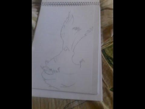 Рисунок карандашом Волк
