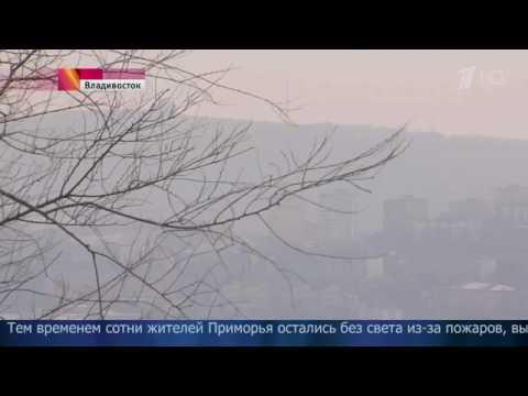 ВоВладивостоке резко упала видимость— вгород пришел дым отлесных пожаров.