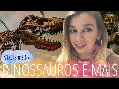 Dinossauros em Toronto: um dia no Royal Ontario Museum | DAILY VLOG #306