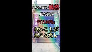 お金・仕事に本当に困ったとき助けてくれる「烏森神社」東京超強力パワースポット【遠隔参拝】#shorts