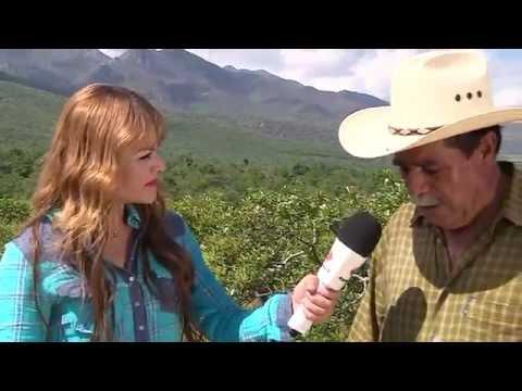 """Estampas de mi Provincia """"Mesa Grande"""" Producción Aguascalientes TV"""