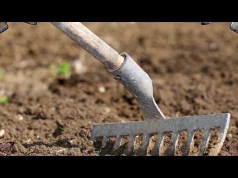 Весенняя подготовка почвы. Перекопка. Какие правила нужно соблюдать