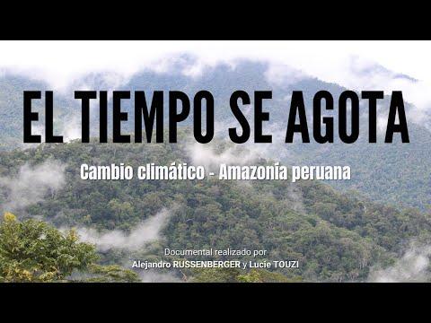 CAMBIO CLIMÁTICO EN LA AMAZONÍA