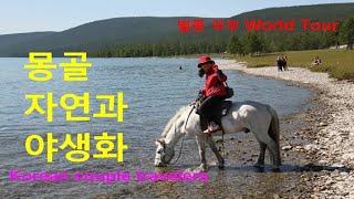 몽골의 자연과 야생화