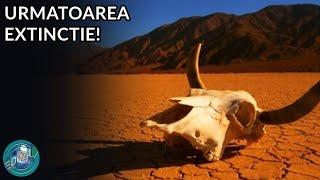 Cand va fi urmatoarea Extinctie in Masa?