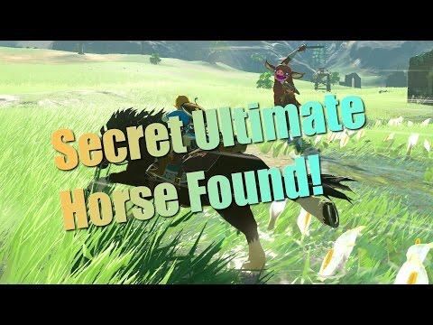 Breath of the Wild Guides  Secret Horse! How to tame the horse named Lord of the Mountain!