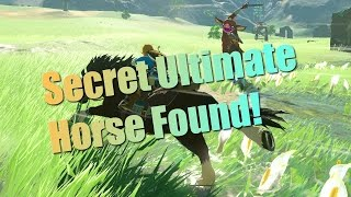 Breath of the Wild Guides - Secret Horse! How to tame the hors…
