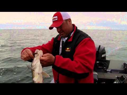 Tony Roach Fishing Report Early June 2015