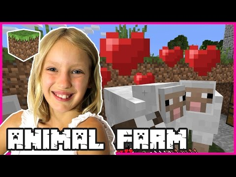 ANIMAL FARM   Minecraft