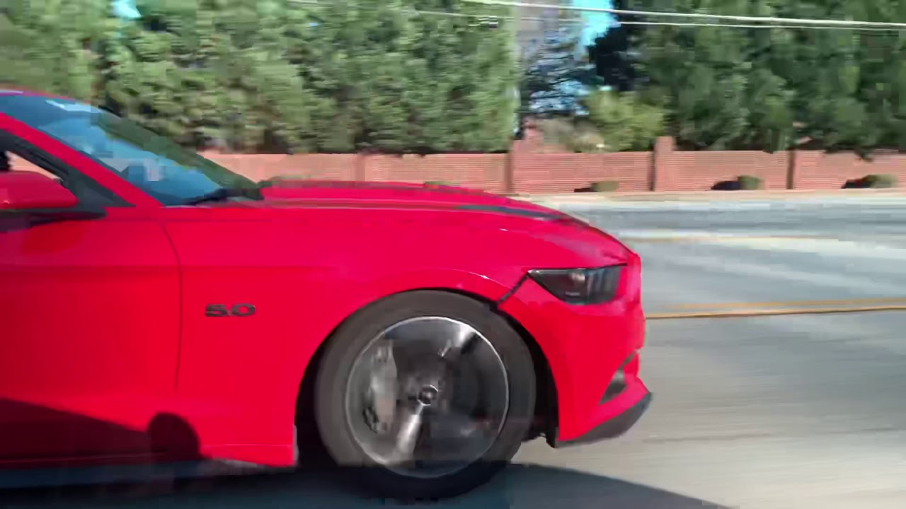 MUSTANG ECOBOOST VS A COYOTE 5.0 **GETS UGLY** - YouTube