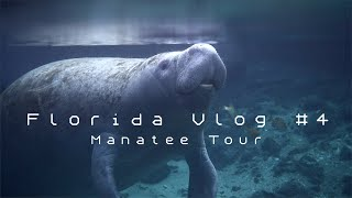 Manatee Tour in Crystal River | FLORIDA VLOG #4
