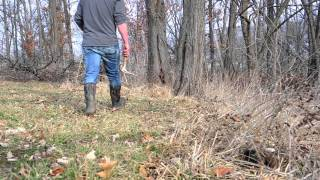 Orscheln Farm & Home Training Your Dog To Hunt Antler Sheds Blog Video