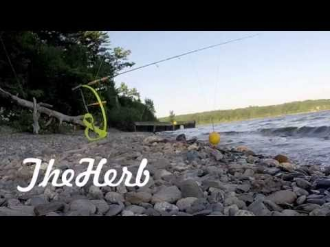 Mid-Summer Trout Fishing (Wachusett Res)