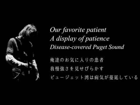 Nirvana - Frances Farmer Will Have Her Revenge On Seattle - Lyrics & 日本語字幕