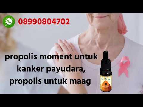 082281627462 WA propolis moment untuk kanker payudara, propolis untuk maag