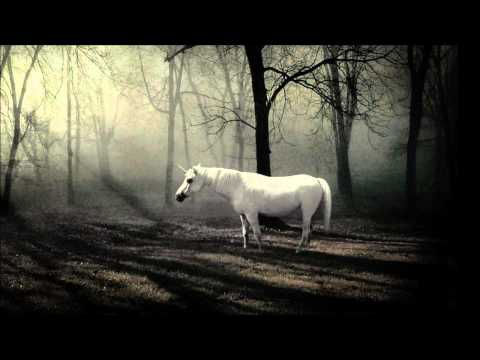 Stimming - The Unicorn