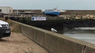 le port  deauville tourism plage trouville normandie trouville sur mer france