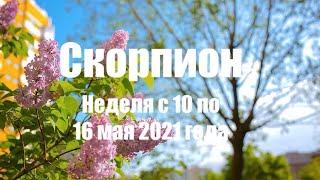 Скорпион. Таро-прогноз на неделю с 10 по 16 мая...