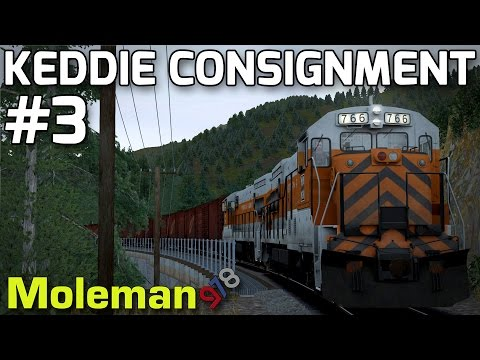 Keddie Consignment Part 3 | TS2016 | Feather River Canyon | GE U30B
