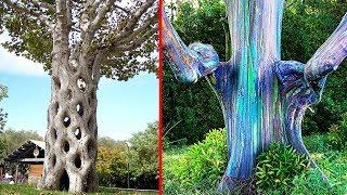 10 Loài cây có hình hài tự nhiên kỳ dị bậc nhất