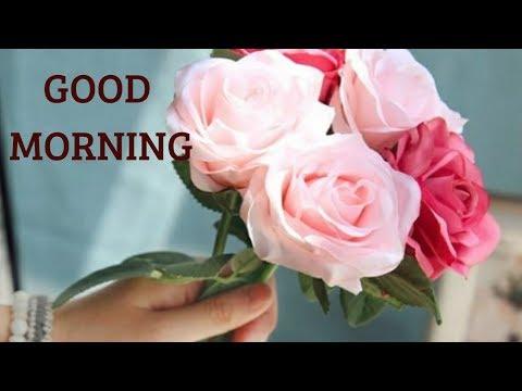 Good night all new photo shayari download hd wallpapers