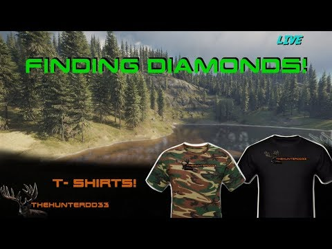CALL OF THE WILD Where Are The DIAMONDS2!!   THEHUNTER 2017