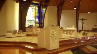 Xin Cảm Ơn Người Cảm Ơn Đời | Nhạc Thánh Ca | Những Bài Hát Thánh Ca Hay Nhất