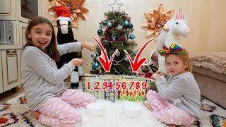 Surprize Dulci sub Bradut   Advent Calendar cu Jeleuri