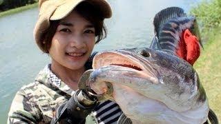ตกปลาชะโด มันส์สุดๆ กับ เมย์มี่ by fishingEZ